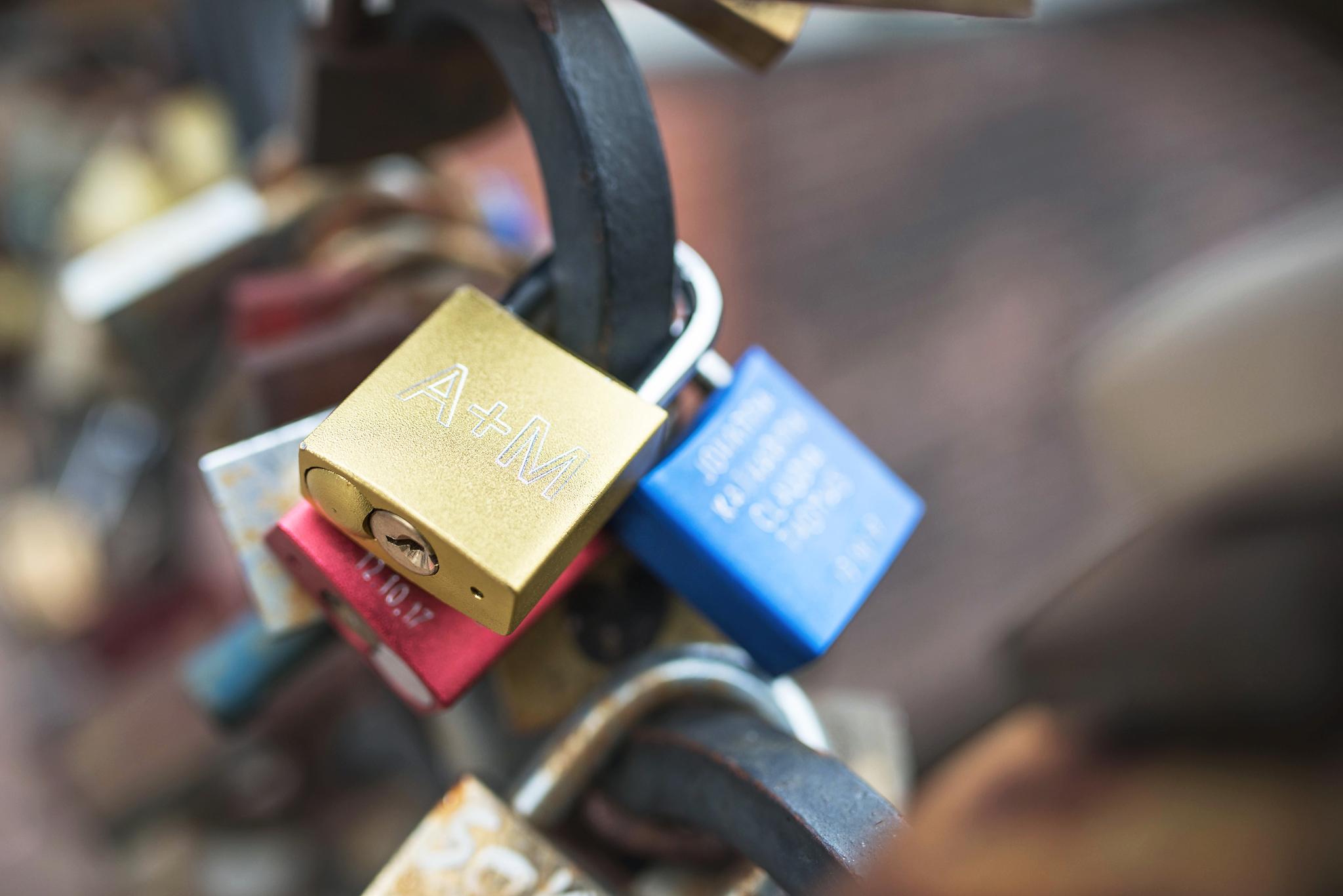 Most Miłości - kłodki